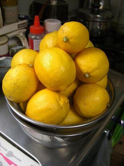山盛りレモン.JPG